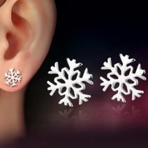 Ohrringe Silver Snowflake - Silber